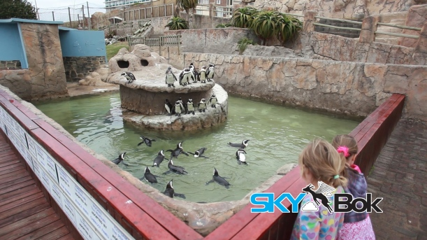 East London Aquarium.Still005